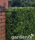 www-gardenfx-ie-box-hedge-artificial-hedge-3