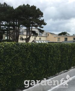 Artificial Box Hedge Panel, www.gardenfx.ie